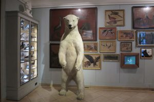 yams_musee-chasse-13y_1601